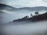 مه سیاه